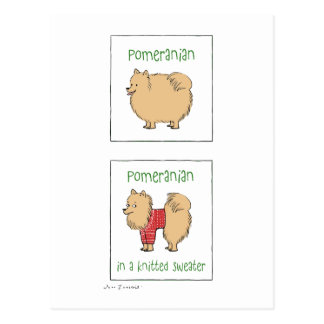 Pomeranian en un suéter hecho punto postales