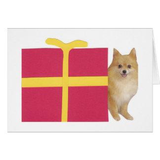 Pomeranian Gift Box Greeting Card