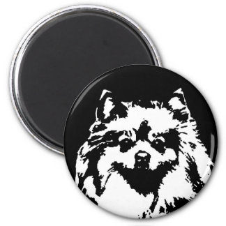 Pomeranian Gifts - Magnet