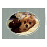 Pomeranian Happy Birthday Wishes Greeting Card