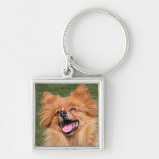 Pomeranian happy dog keychain, gift idea keychain