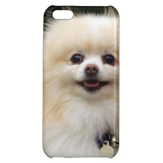 Pomeranian Headshot 1 iPhone 5C Covers