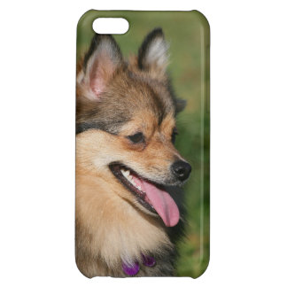 Pomeranian Headshot Panting iPhone 5C Cover