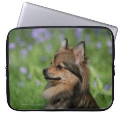 Neoprene Laptop Sleeve 15' with Pomeranian Phone Cases design