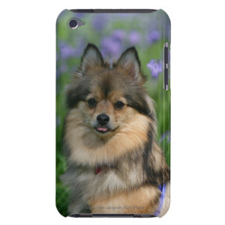 Pomeranian in the Grass Case-Mate iPod Touch Case