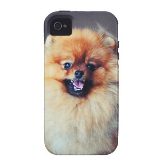 Pomeranian iPhone 4 Case Mate Tough Case