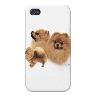 Pomeranian iPhone 4 Protectores