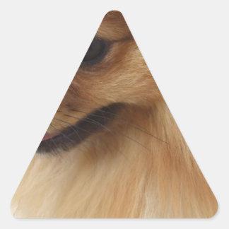 Pomeranian Lover Triangle Stickers