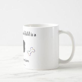 pomeranian - más cría taza clásica