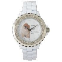 Pomeranian Mom Watch