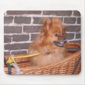 Pomeranian Mouse Pad