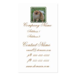 Pomeranian mullido plantillas de tarjetas personales