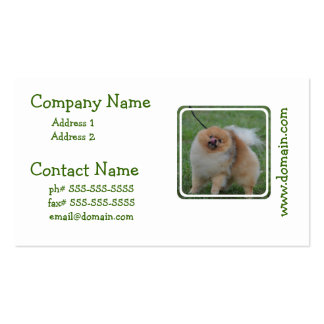 Pomeranian mullido plantilla de tarjeta de negocio