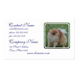 Pomeranian mullido tarjetas de visita