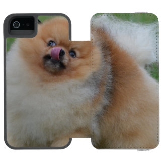 Pomeranian mullido funda cartera para iPhone 5 watson