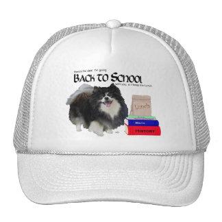 Pomeranian negro de nuevo a escuela gorras