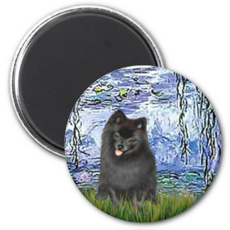 Pomeranian (negro) - lirios 6 iman