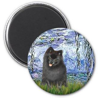 Pomeranian (negro) - lirios 6 imán redondo 5 cm
