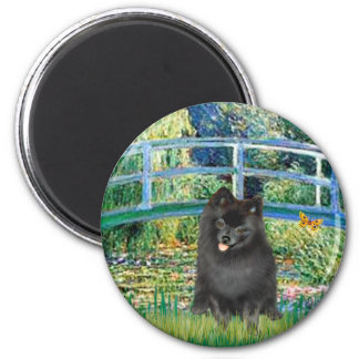 Pomeranian (negro) - puente imán redondo 5 cm