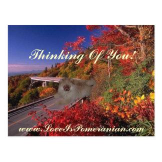 Pomeranian nombró Zeus escena colorida del otoño Tarjetas Postales