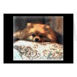 Pomeranian Notecard Greeting Card