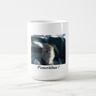 Pomeranian on green stripped couch mug Pomerishus