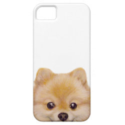 Pomeranian, original phone case by miart