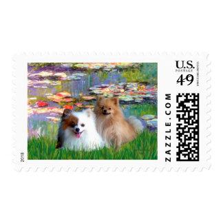 Pomeranian Pair 2 - Lilies 2 Postage