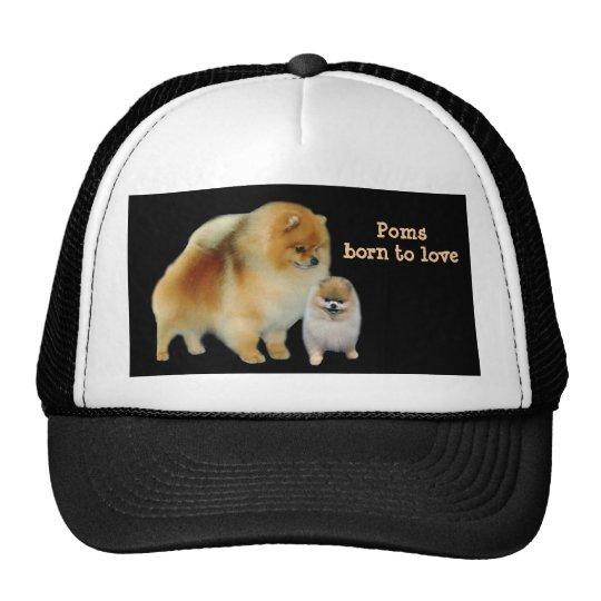 Pomeranian Pals Hat