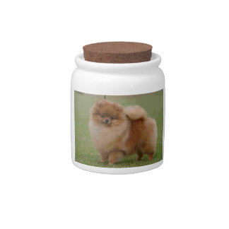 Pomeranian Perfection, Candy Jars