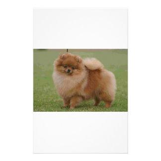 Pomeranian Perfection, Stationery