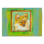 Pomeranian persigue la pintura colorida de la dive tarjeta