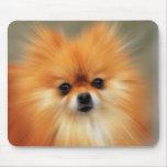 Pomeranian Photography Zoom Speed Art Portrait Mouse Pad
