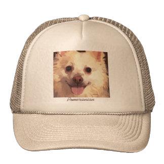 Pomeranian pintado bonito hace frente al casquillo gorra