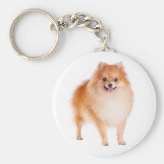 Pomeranian Pom Pom Puppy Dog Keychain Basic Round Button Keychain