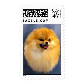 Pomeranian Portrait Stamps