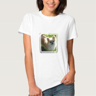 Pomeranian Puppies Woman's T-Shirt