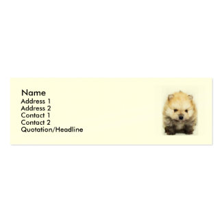 Pomeranian puppy Double-Sided mini business cards (Pack of 20)