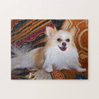 Pomeranian que miente en las mantas rompecabeza con fotos