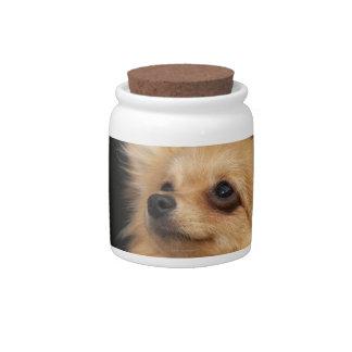 Pomeranian que mira para arriba en negro platos para caramelos