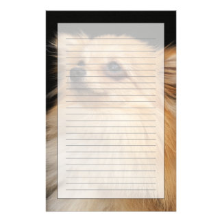 Pomeranian que mira para arriba en negro papelería