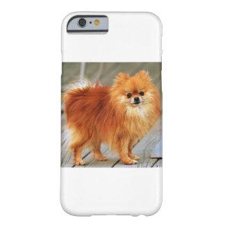 Pomeranian rojo funda de iPhone 6 barely there