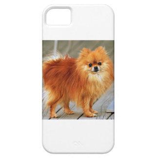 Pomeranian rojo iPhone 5 funda
