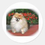 Pomeranian Round Sticker