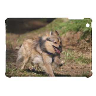 Pomeranian Running with Harness on Cover For The iPad Mini