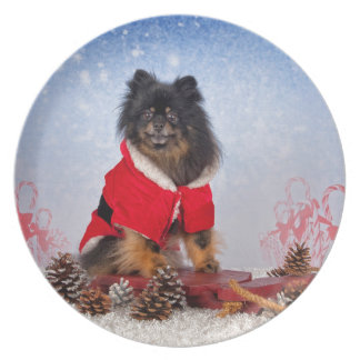 Pomeranian sled ride party plate