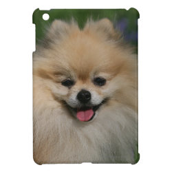 Pomeranian Smiling Case For The iPad Mini