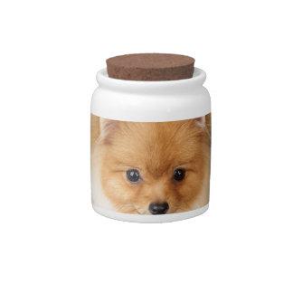 Pomeranian spitz candy jar