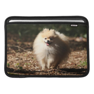 Pomeranian Trotting in the Fallen Leaves Sleeve For MacBook Air