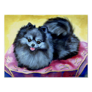 Pomeranian Wall Print Poster